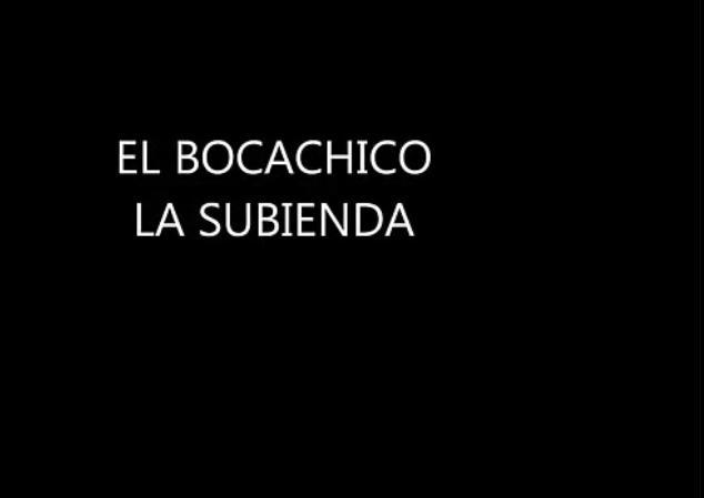 Bocachico